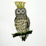 Crowned Owl (2010) - mixed media on paper - 30 x 21 in. - $1200 (framed)